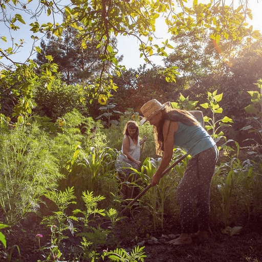 Permaculture Women