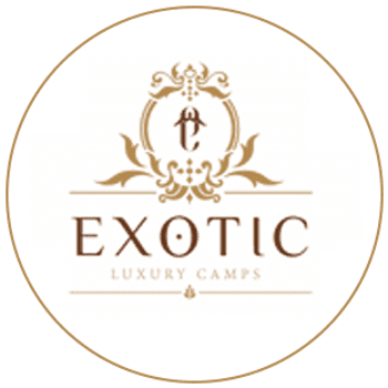 Exotic Luxury Camps