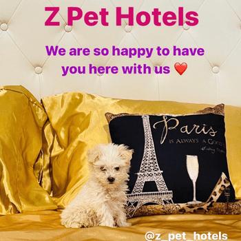 Z Pet Hotels