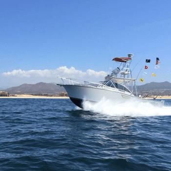 CABO SPORTFISHING CREW | Fishing Charters