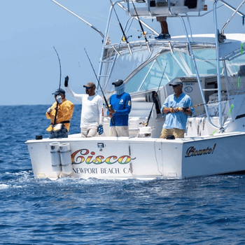 PICANTE SPORTFISHING - Fishing Charters