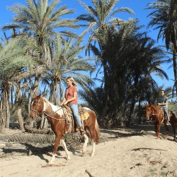 RANCHO CARISUVA - Horse Riding & ATV Tours