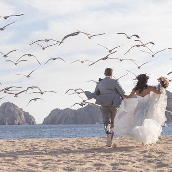 MY WEDDING IN LOS CABOS | Videographer