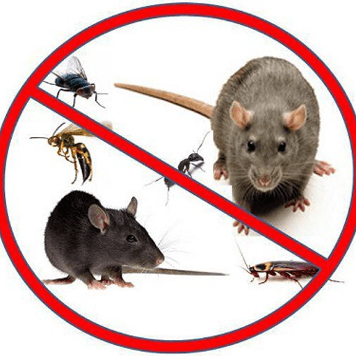 Pests & Rodents