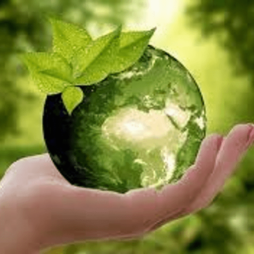 India's Efforts in Enhancing the Consideration of Natural Capital