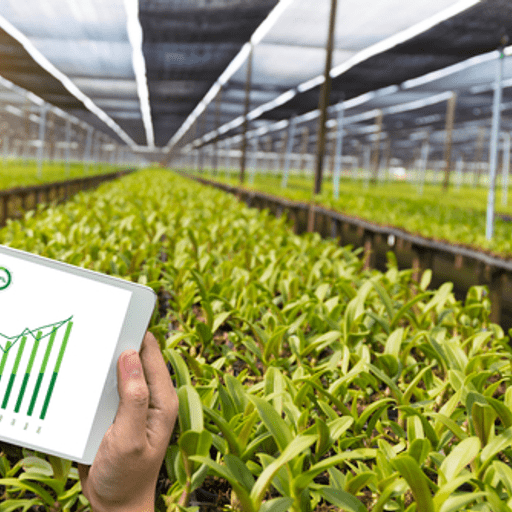 Modernisation of the Economic Accounts for Agriculture in EU
